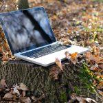A technológia és a munka összefüggései az ökológiai közgazdaságtanban