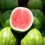 A görögdinnye: a zöld baloldali politika lehetőségei Magyarországon