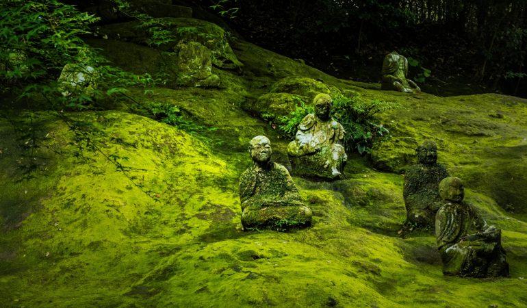 Buddhista közgazdaságtan: énünk elengedése és a fenntarthatóság