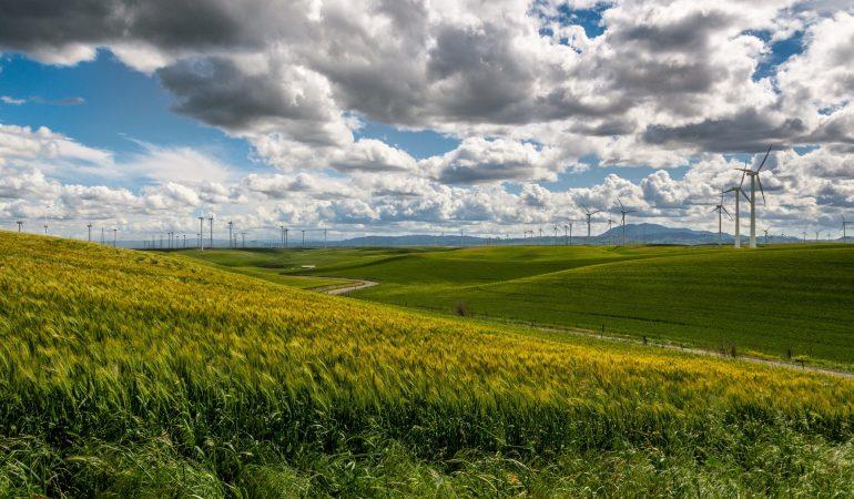 Tanulható és tanítható-e a fenntarthatóság?